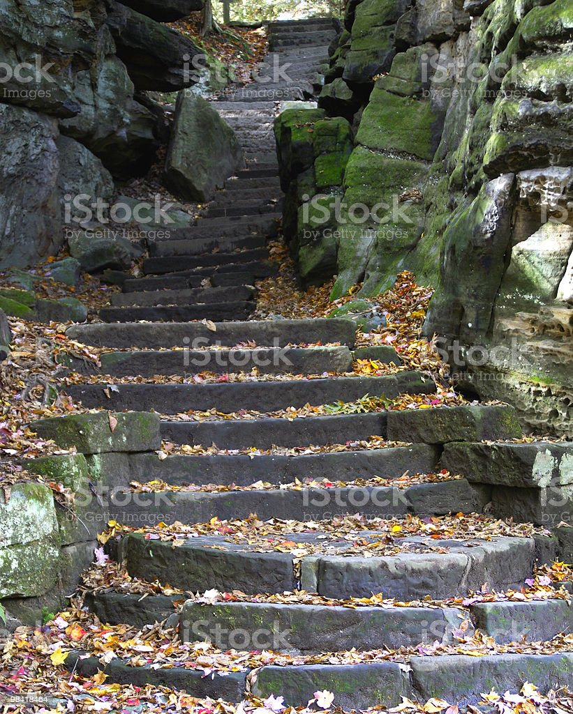 Stone stairs in fall royalty-free stock photo