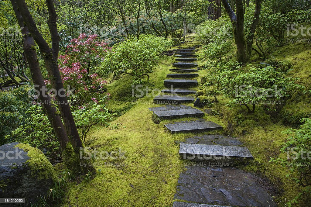 Stone stairway in a garden stock photo
