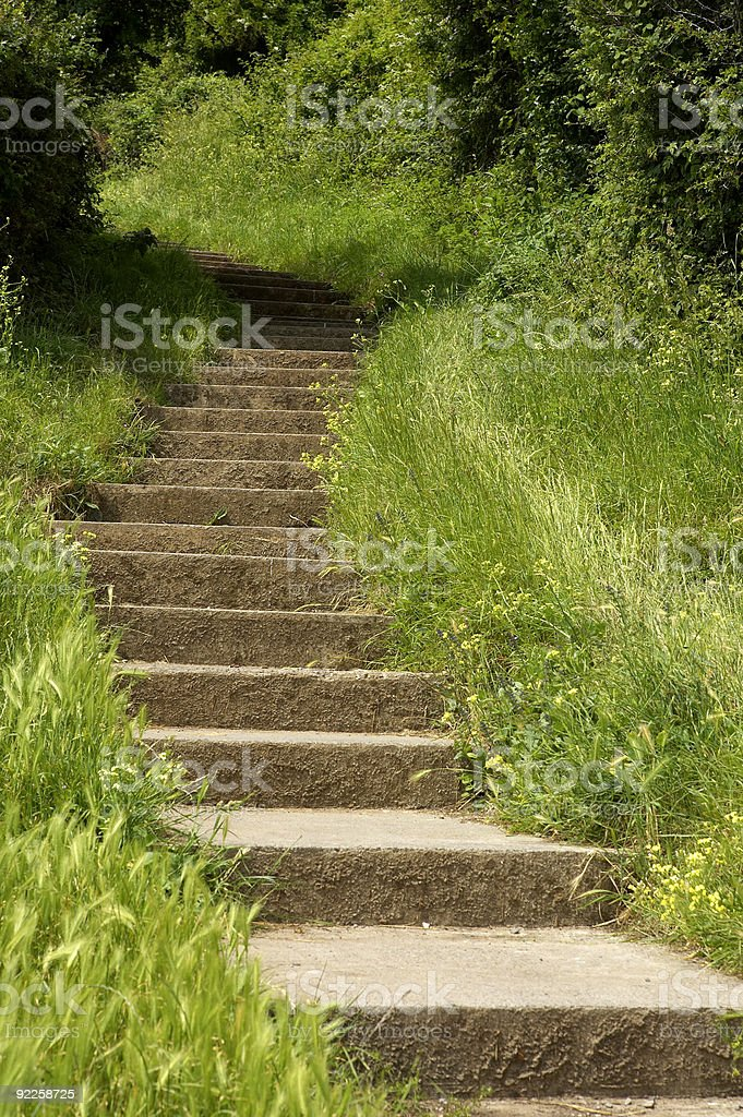 Stone steps leading up a hill royalty-free stock photo