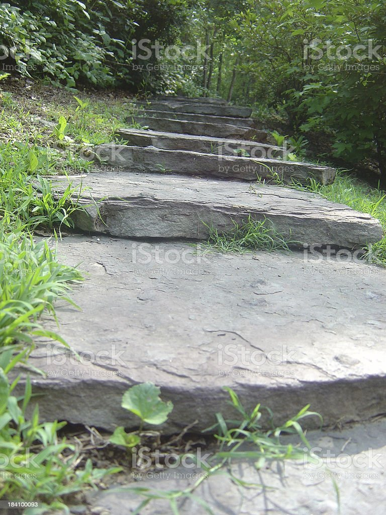 Stone Steps Leading Up To A Forest royalty-free stock photo