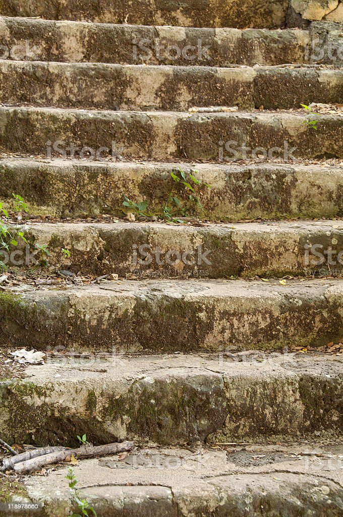 Stone steps on hillside of Hawaiian nature park royalty-free stock photo