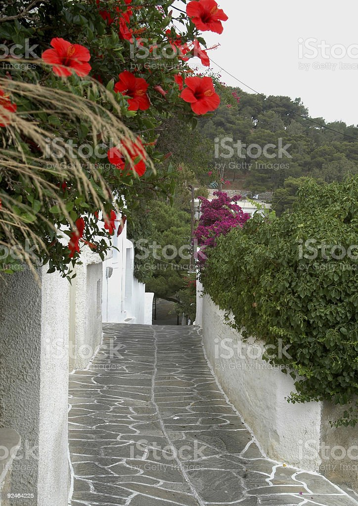 stone tiled road stock photo