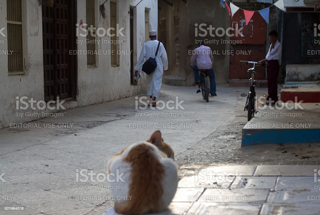 Stone Town, Zanzibar: Cat, Cyclists, and Pedestrians in Alleyway stock photo