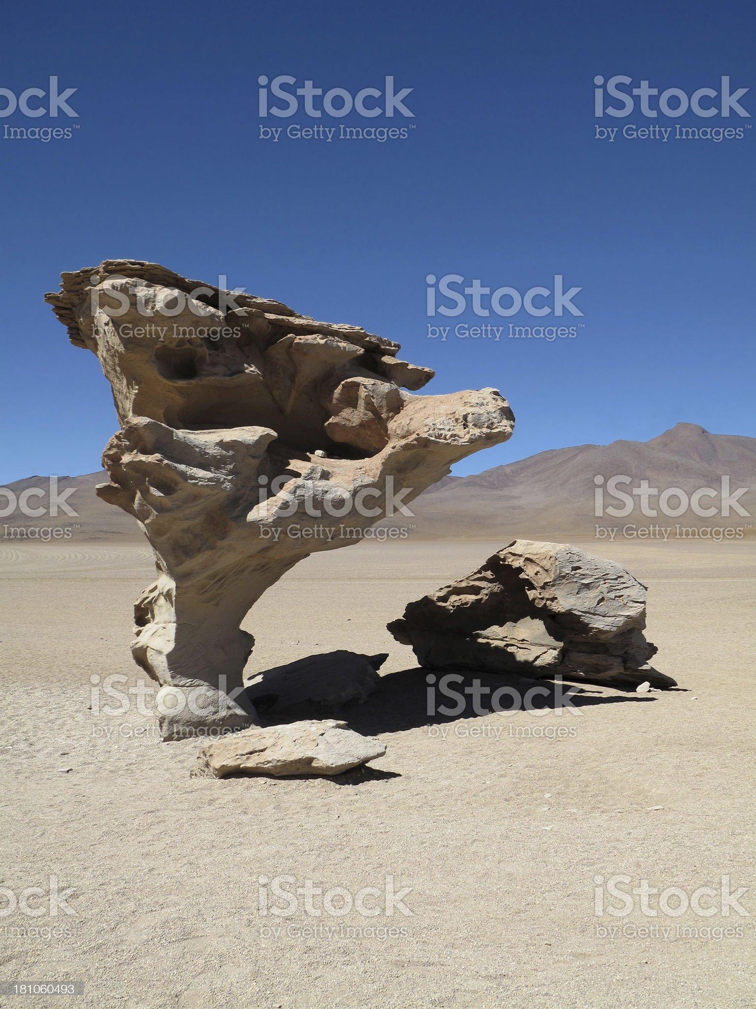 Stone Tree royalty-free stock photo