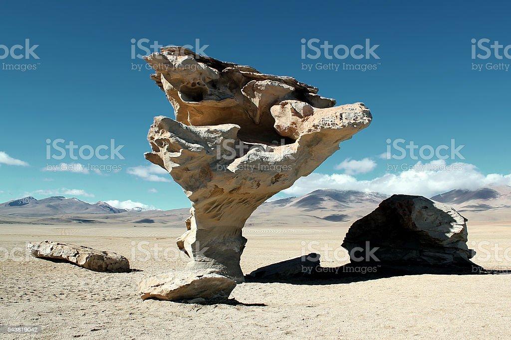 Stone Tree (Árbol de Piedra) stock photo