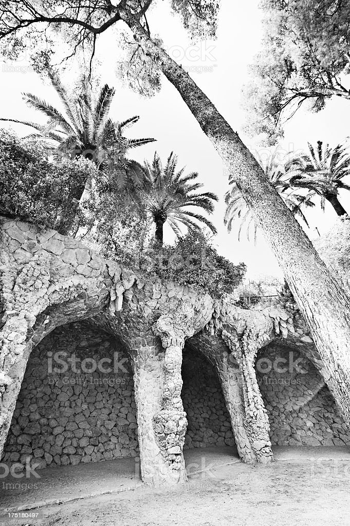 Stone tree-like arches, Park Guell stock photo