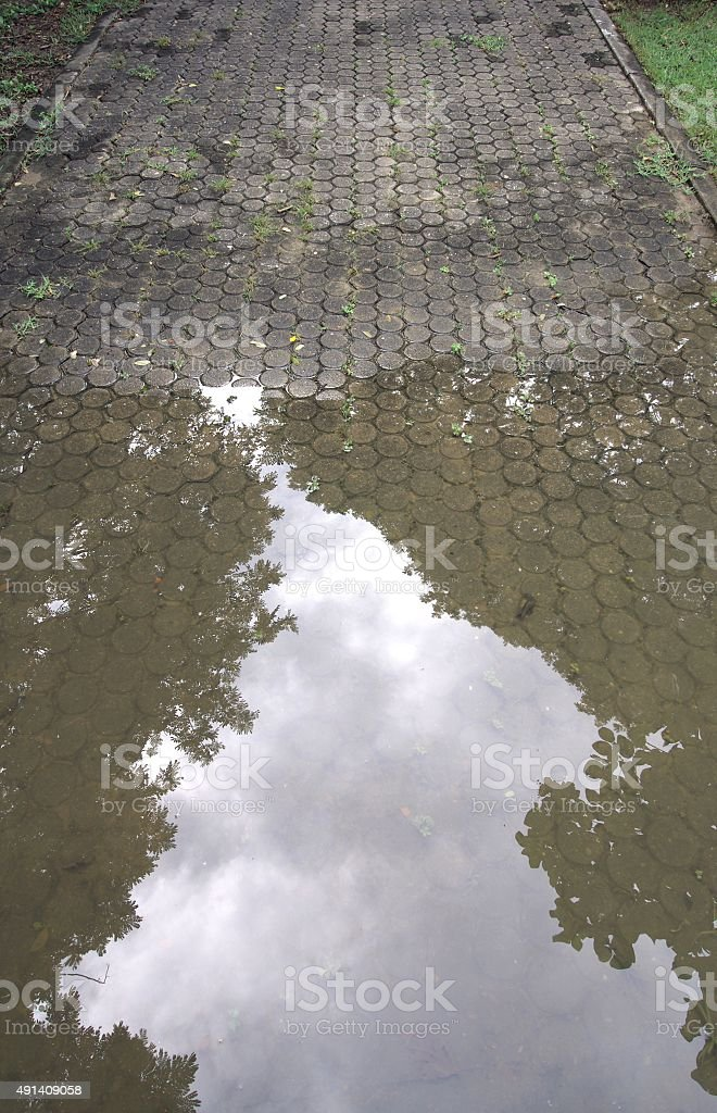 stone walkway with water reflection. stock photo