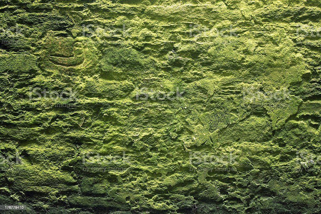 stone wall and moss royalty-free stock photo