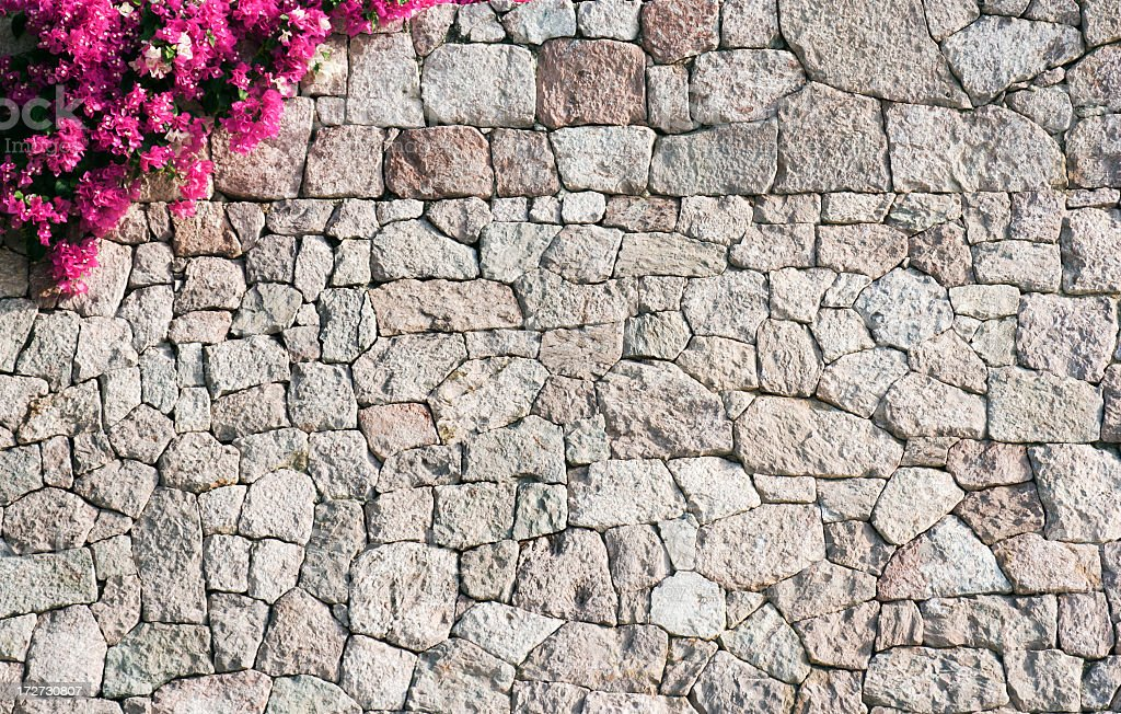 Stone Wall with Bougainvillea Flowers Blooming at Top Left Corner royalty-free stock photo