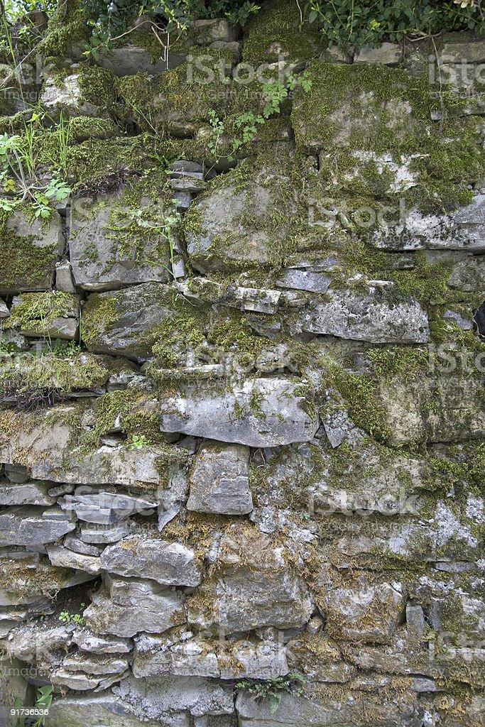 Mur de pierre et de musc photo libre de droits