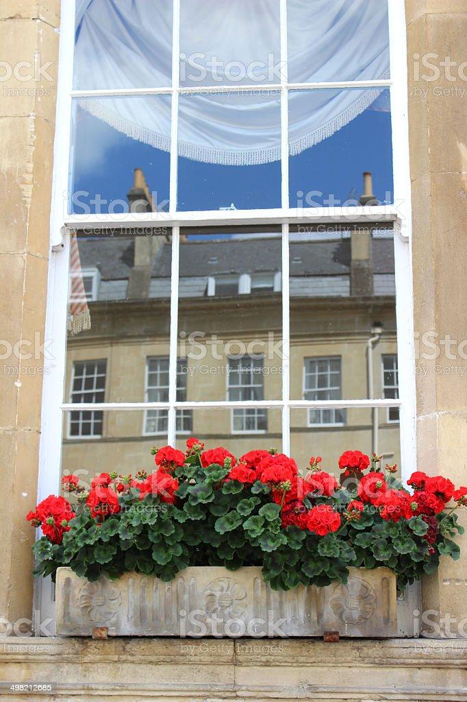 Stone window box with red flowers (geraniums / pelargoniums), Georgian house stock photo