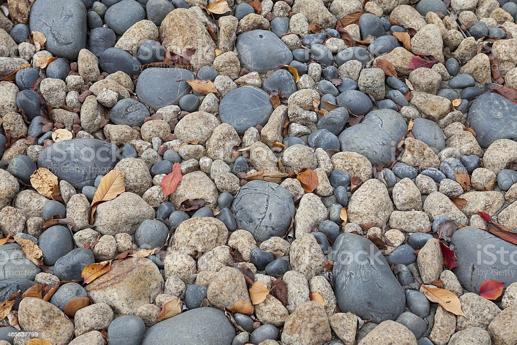 Stone with Autumn Leaves royalty-free stock photo