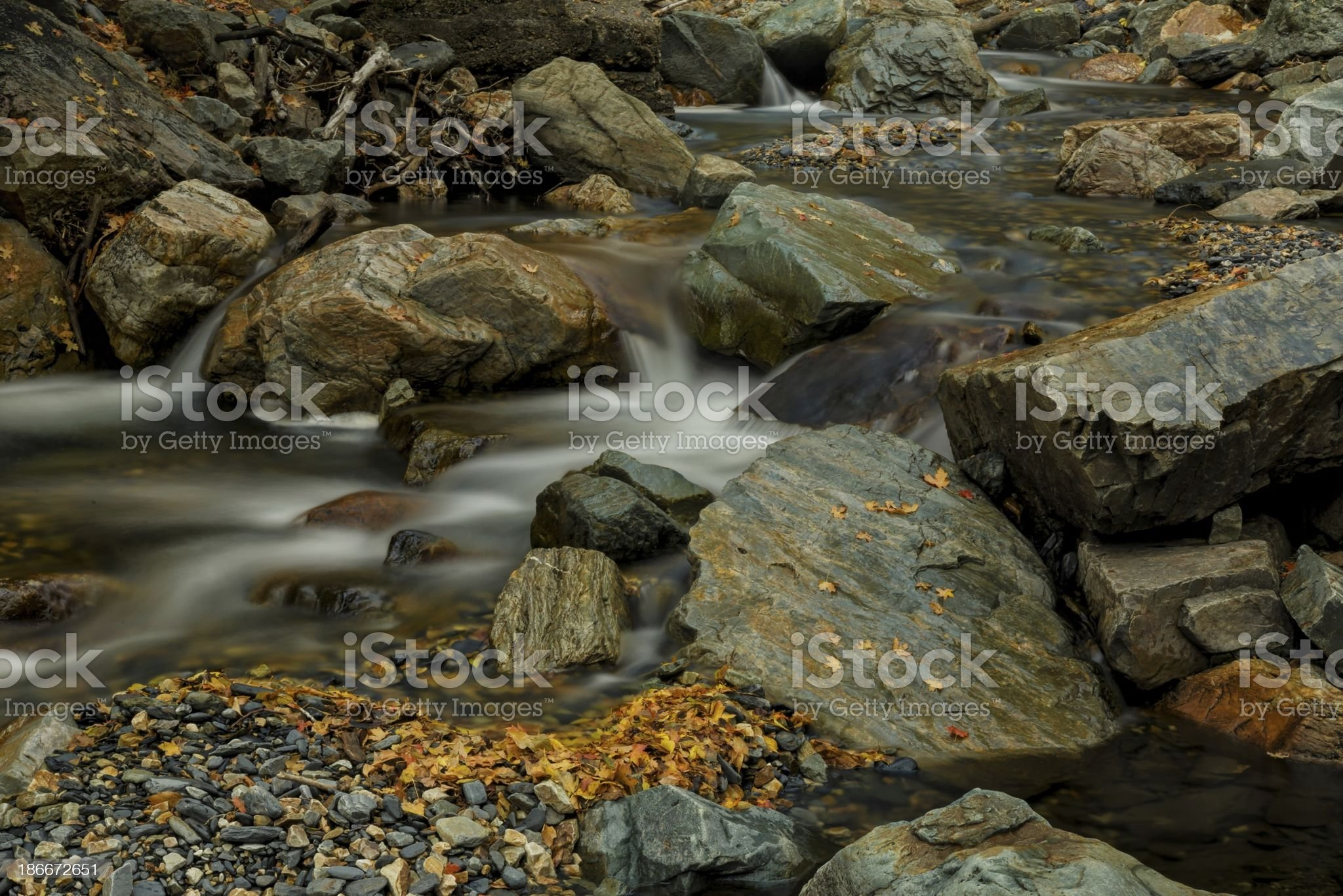 Stones and Autumn Leafs royalty-free stock photo