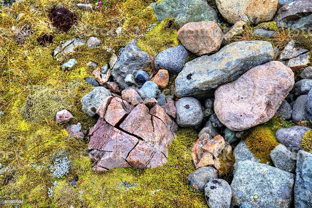 Stones and moss in South Iceland stock photo