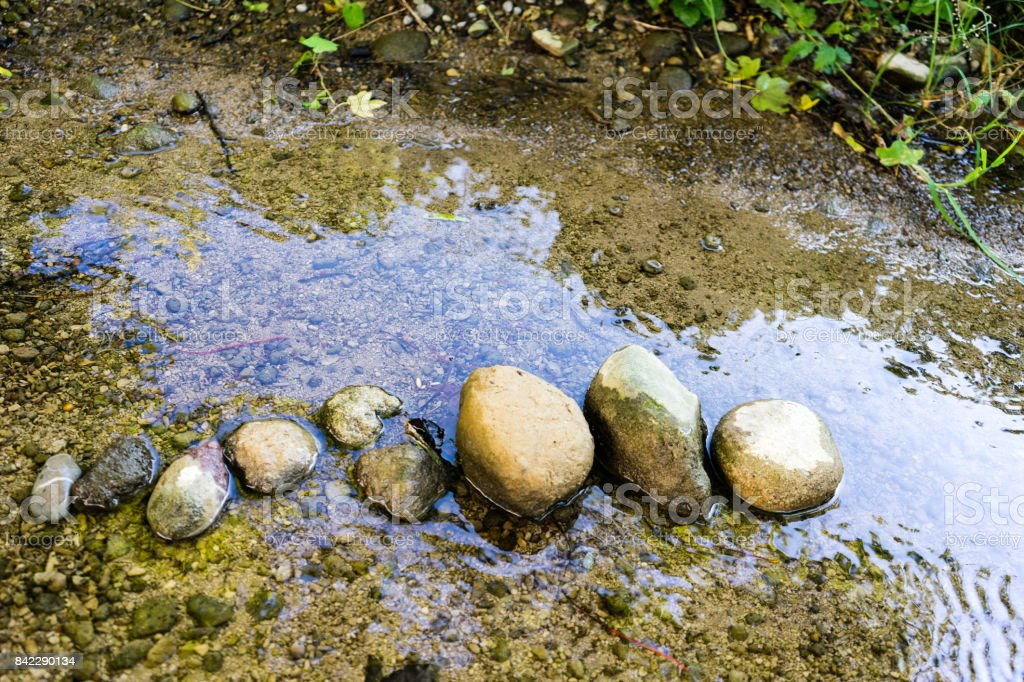 stones lined up in small creek with shallow water stock photo