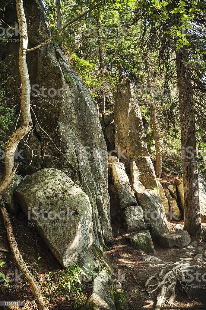 Stones on a mountain trail in the High Tatras royalty-free stock photo