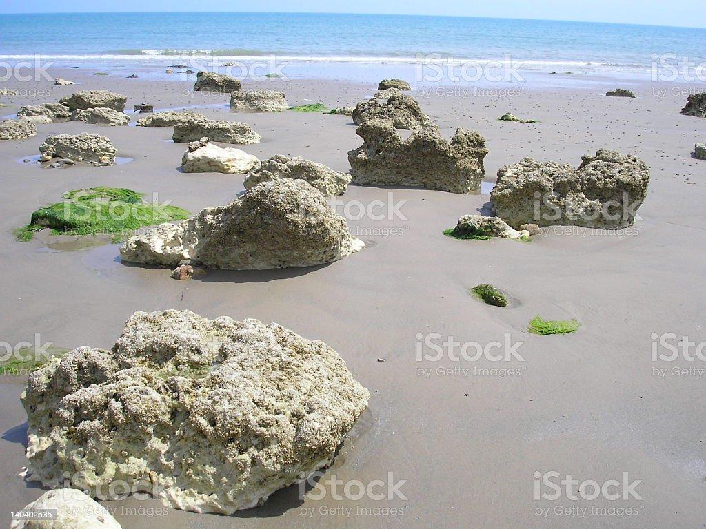 stones on beach royalty-free stock photo