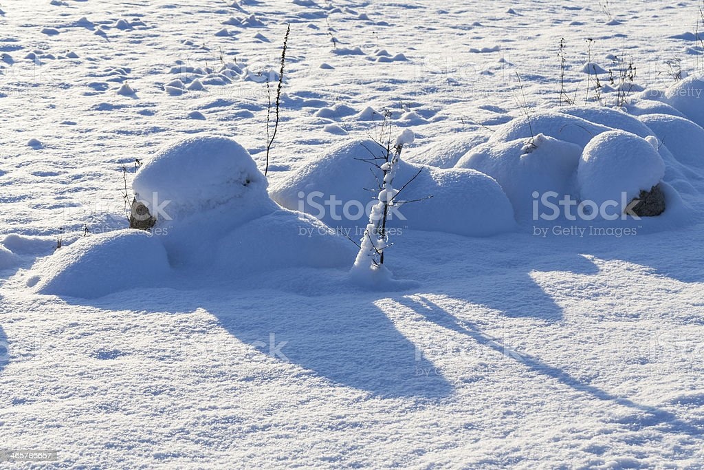 Stones on snow meadow royalty-free stock photo