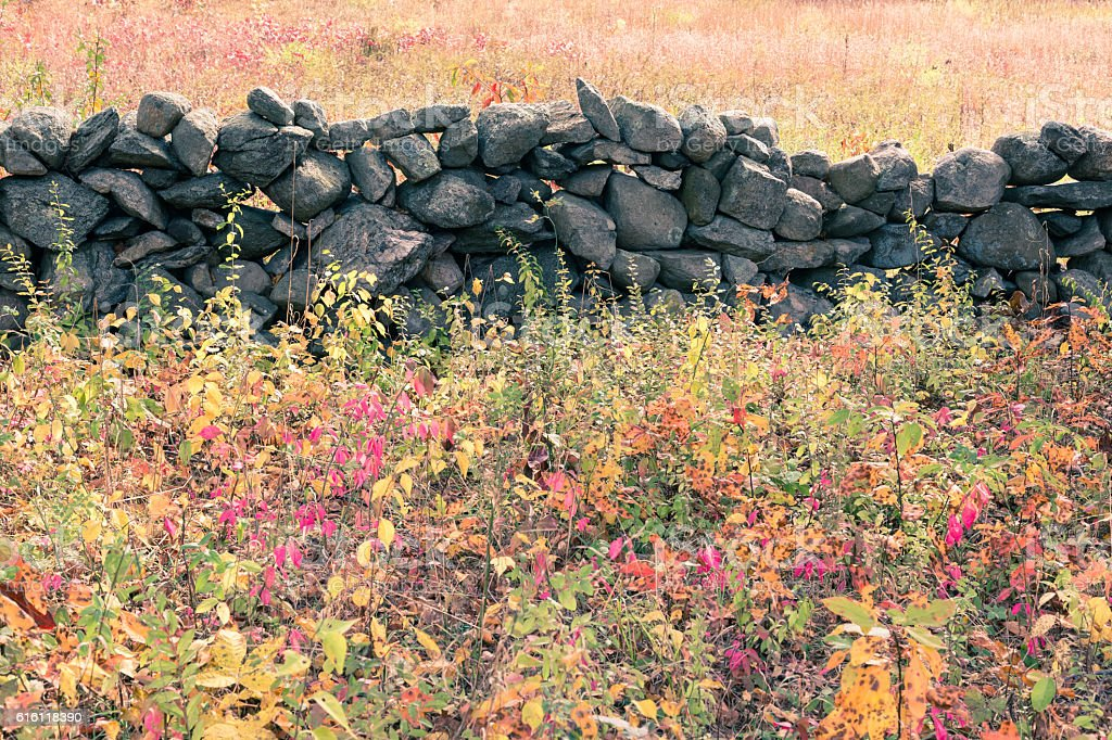Stonewall in meadow stock photo