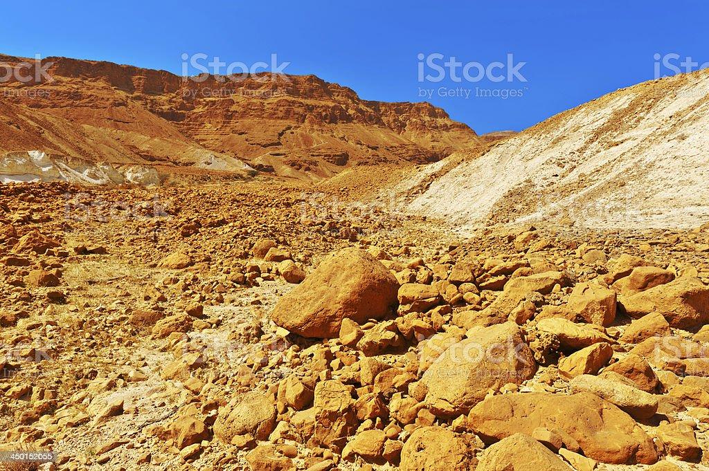 Stony Desert stock photo