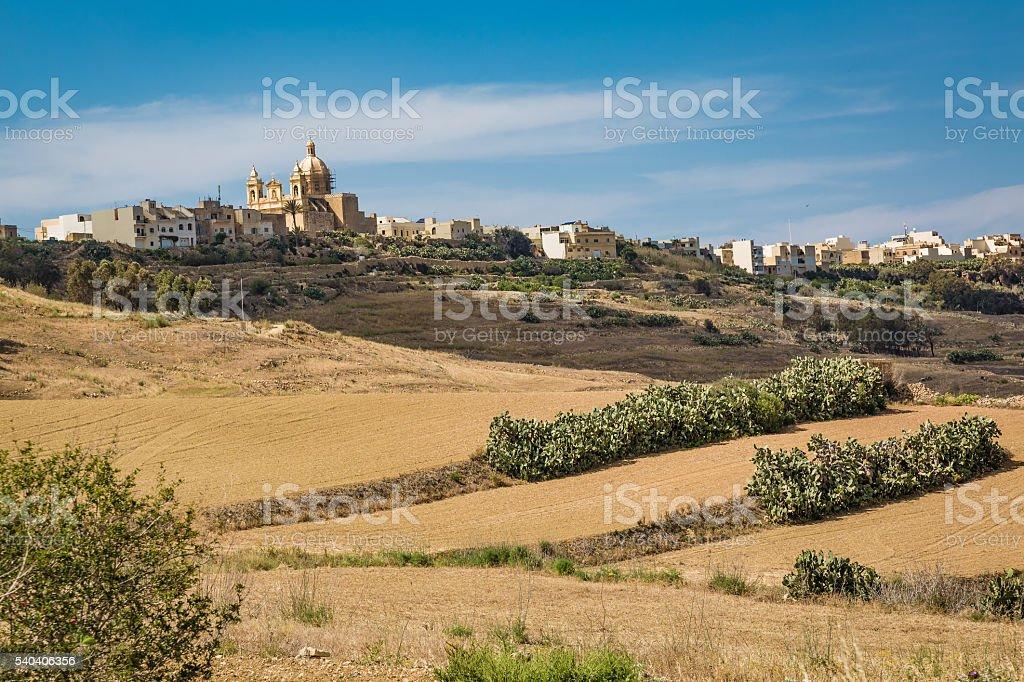 Stony land in Malta stock photo