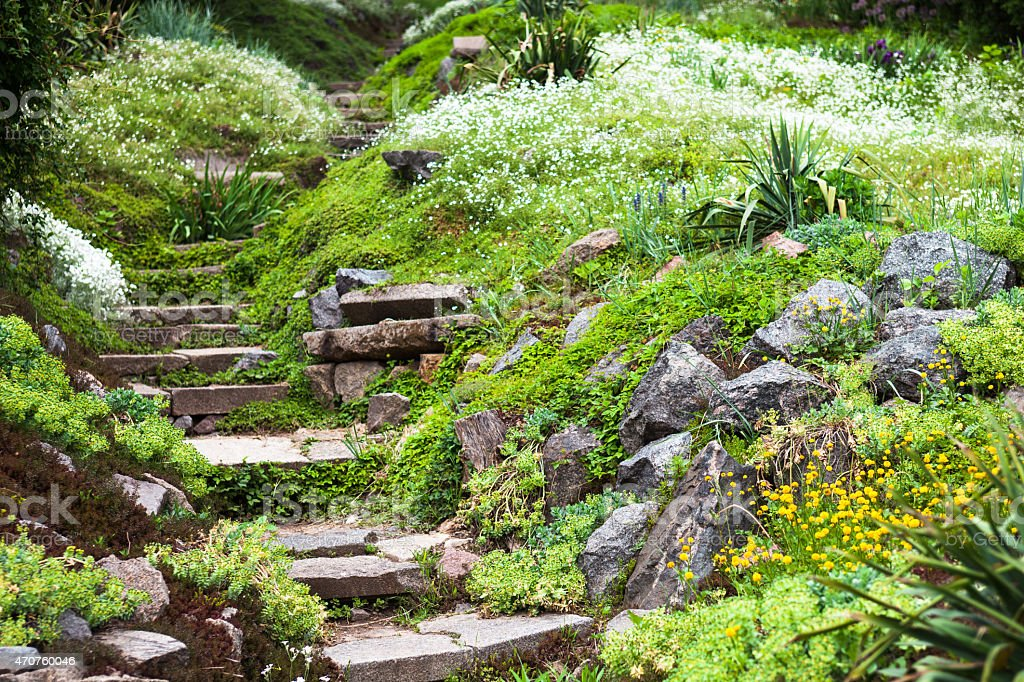Stony stairs in the green garden stock photo
