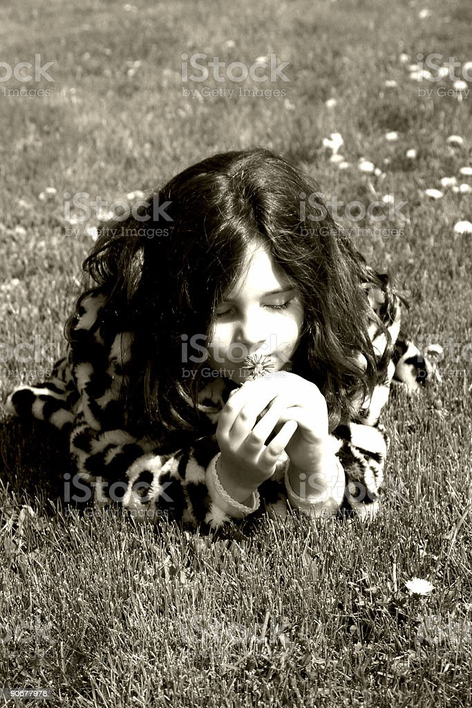stop and smell the flowers stock photo