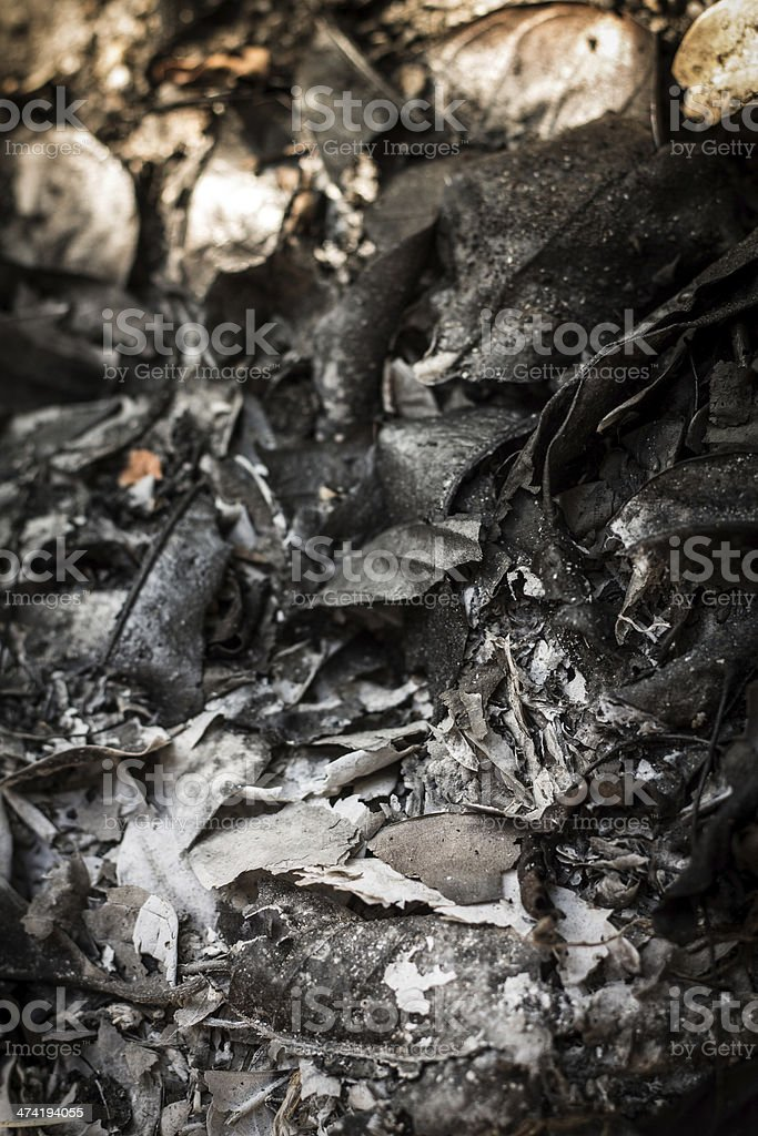 stop burn royalty-free stock photo