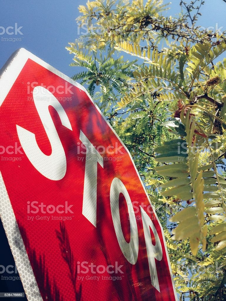 Stop sign with blue sky and green foliage stock photo