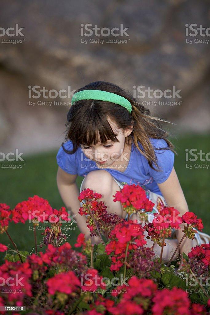 Pausa per odorare i fiori, foto stock royalty-free