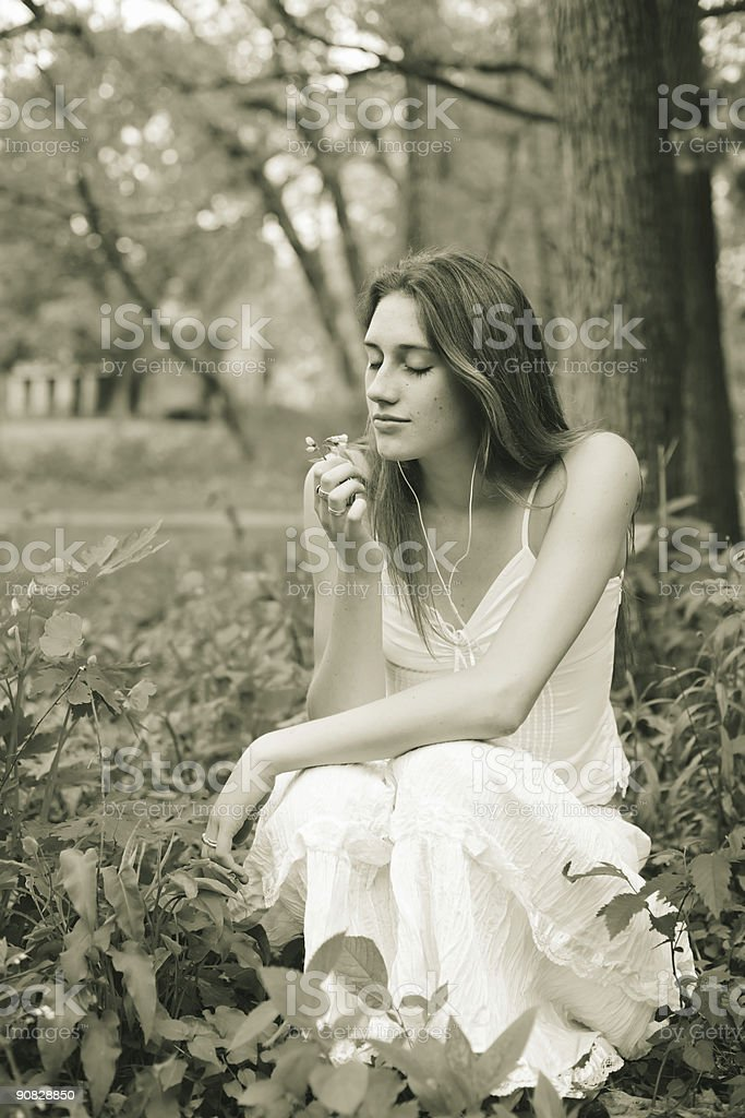 Stop to smell the flowers (golden tone) stock photo