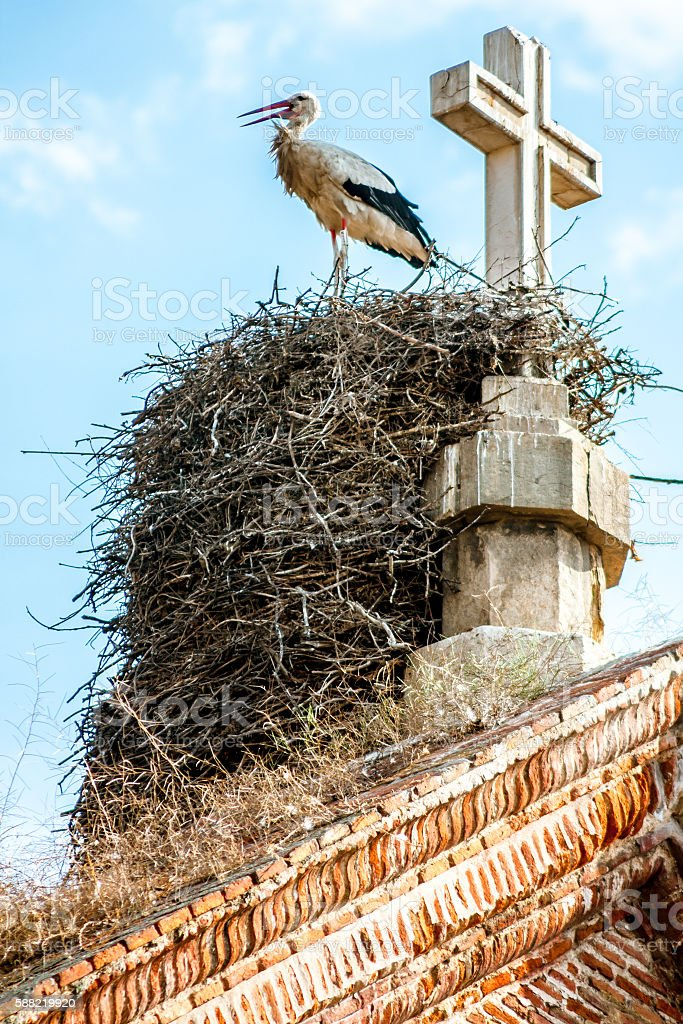 Stork Nest on Church Rooftop stock photo