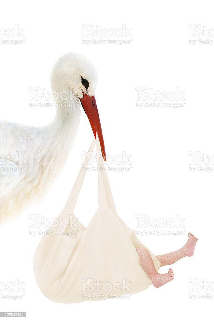 Stork with baby in linen bag royalty-free stock photo
