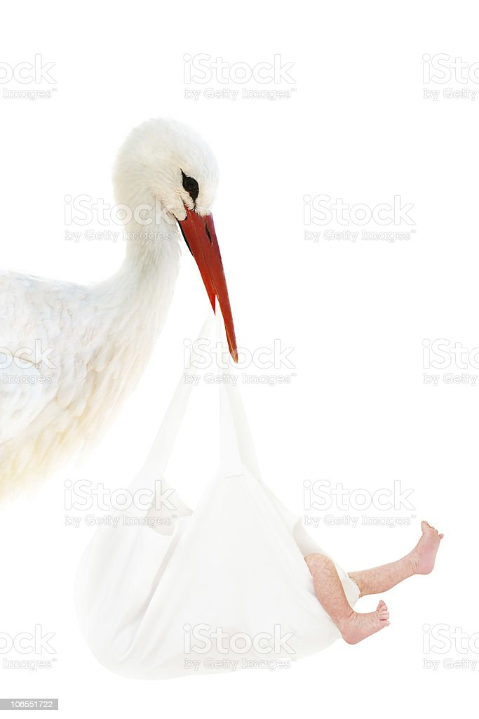 Stork with baby in white bag stock photo