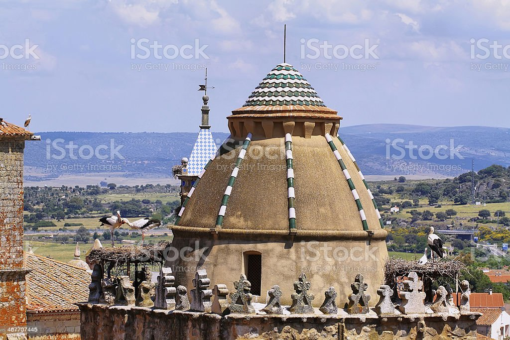 Storks in a Church dome stock photo