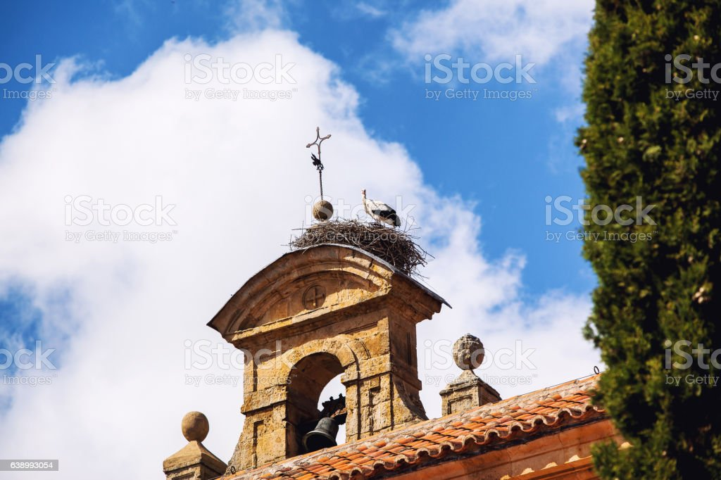 Stork's Nest on a steeple of a church in Salamanca, Spain stock photo