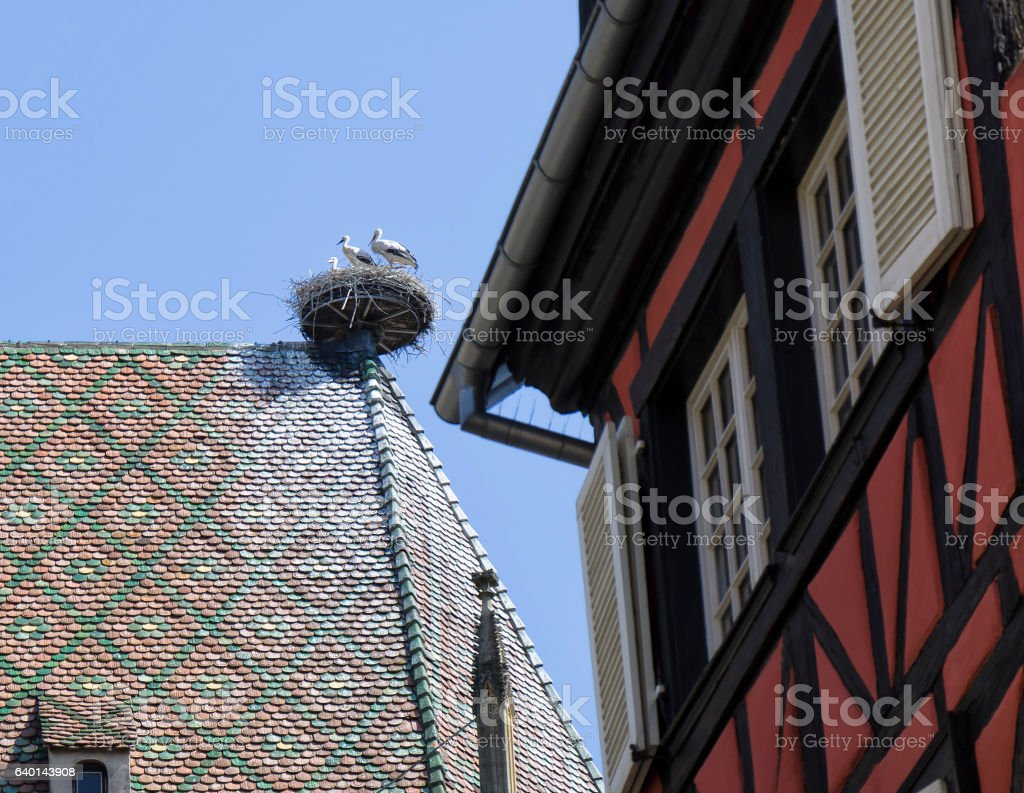 Storks nest on the roof stock photo