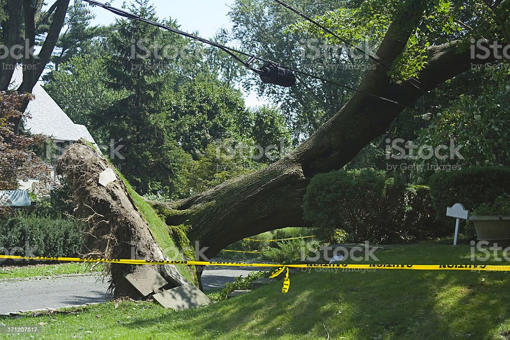 Storm Aftermath stock photo