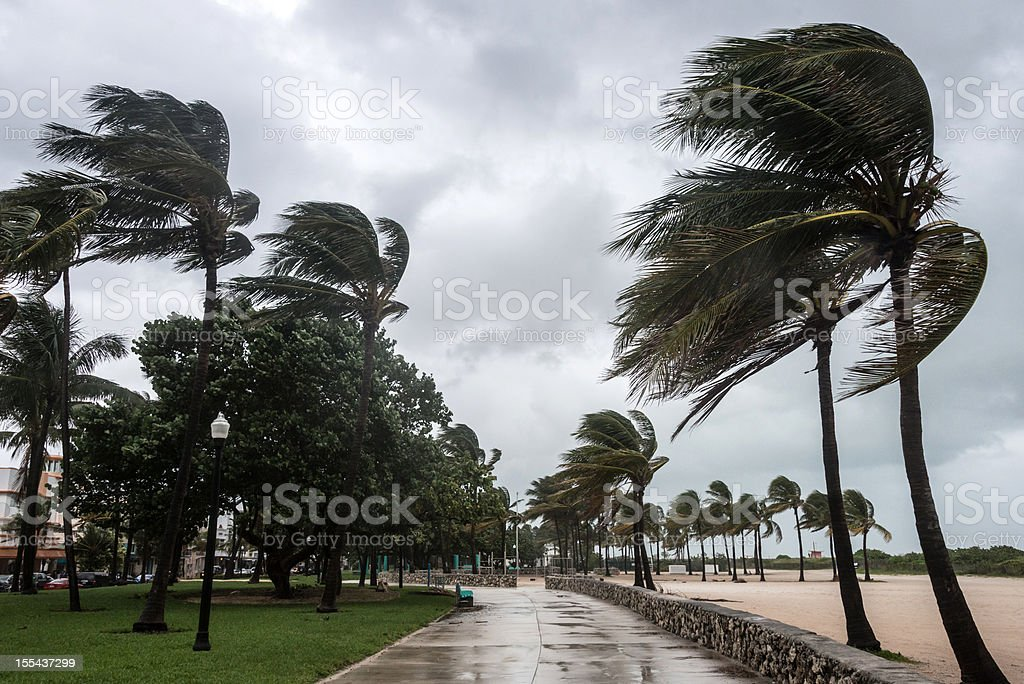 Storm at the beach stock photo