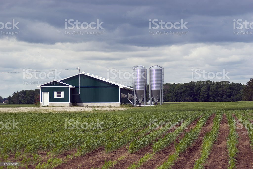 Storm Clouds over Hog Farm stock photo