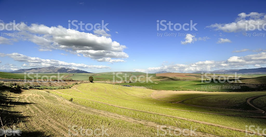 Storm clouds over wheatlands stock photo