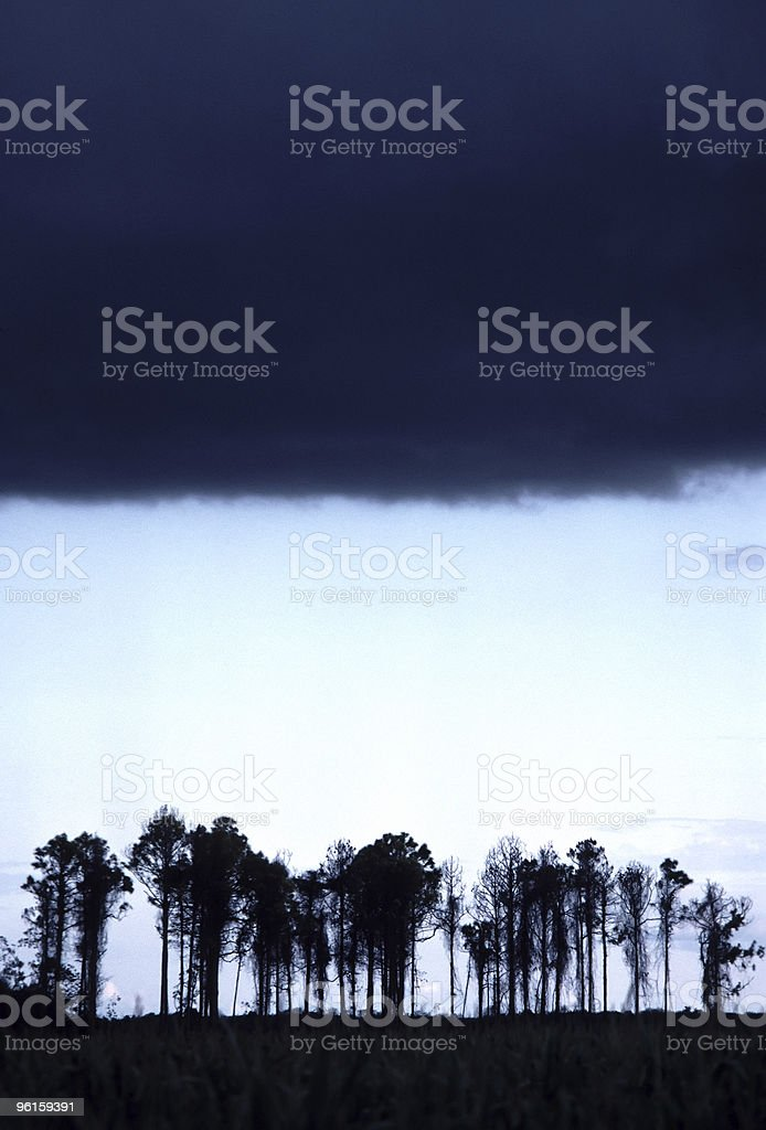 Storm Coming! royalty-free stock photo