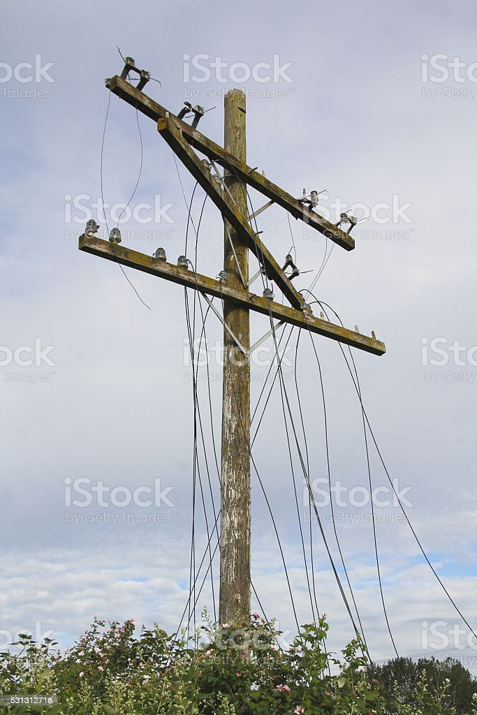 Storm Damage and Infrastructure stock photo