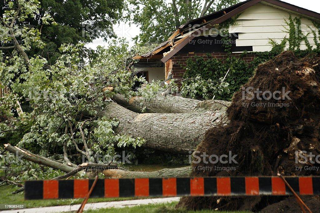 Storm Devastation stock photo
