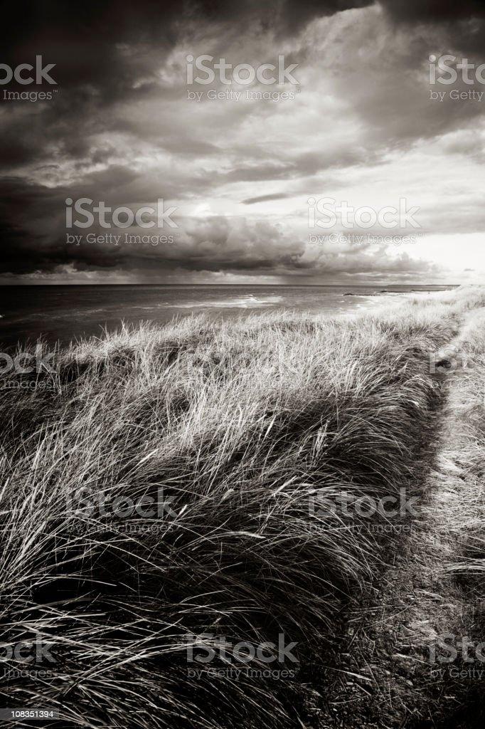 Storm hitting the Danish west coast stock photo