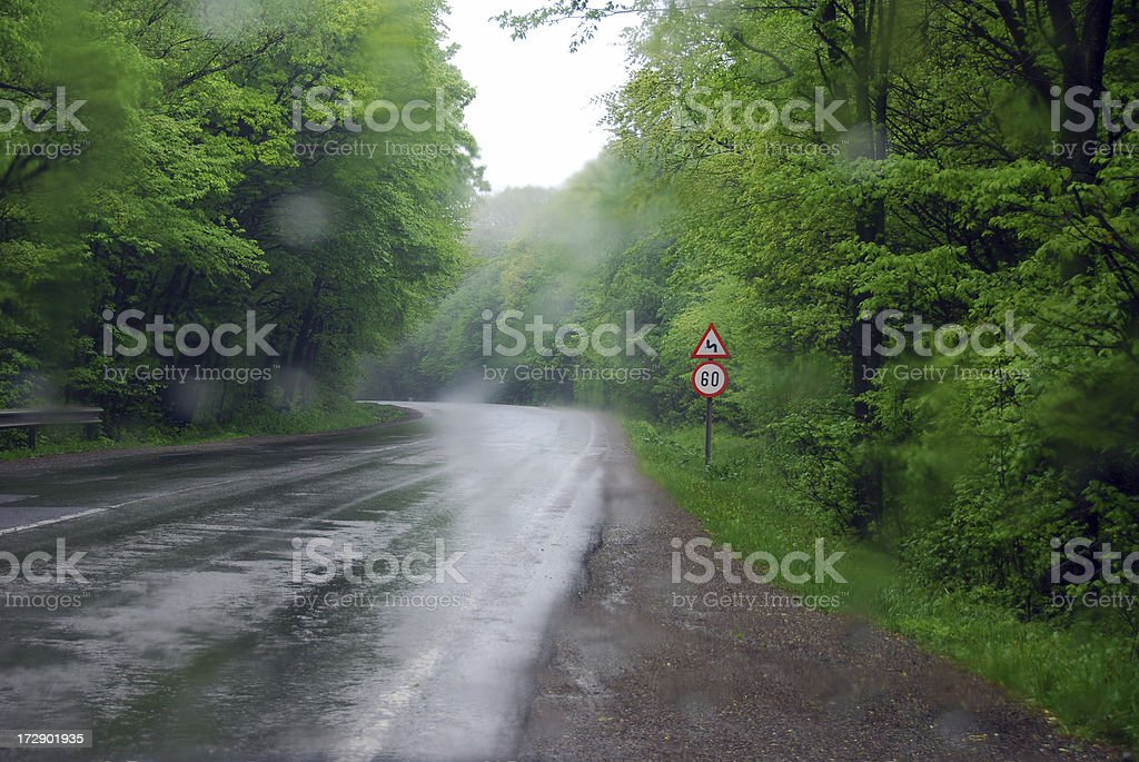 Storm in the wood (1) stock photo