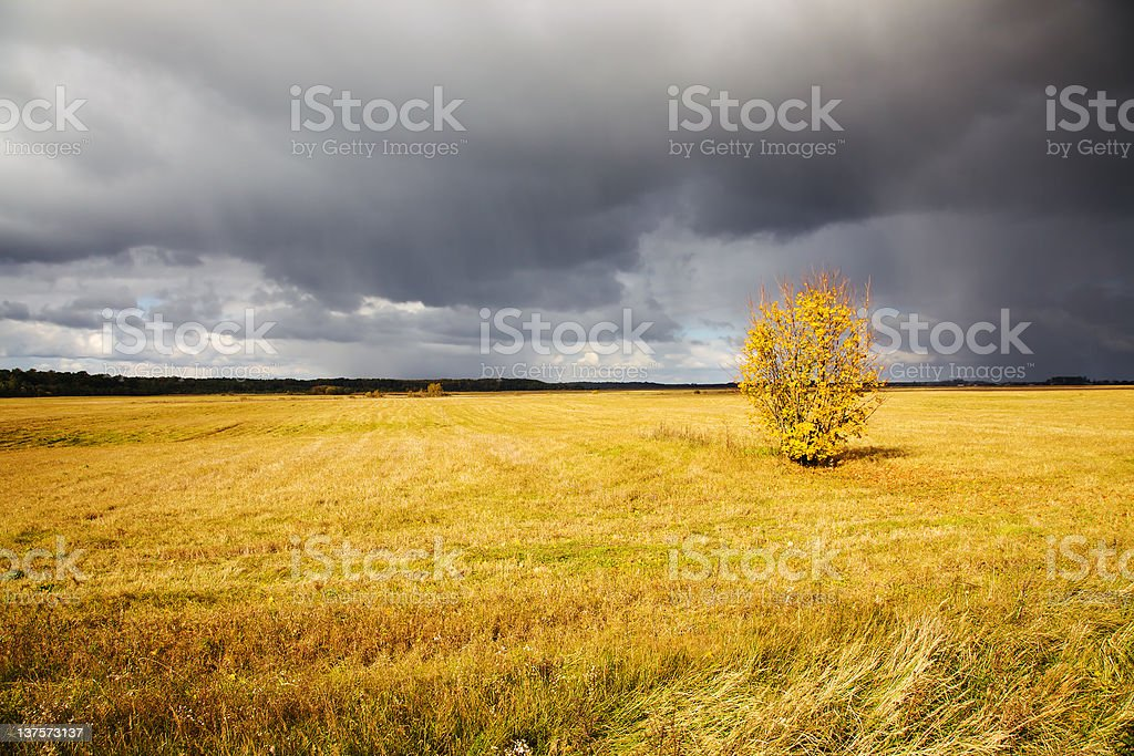 Storm weather royalty-free stock photo