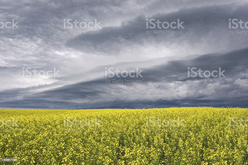 Stormclouds over the Prairie royalty-free stock photo