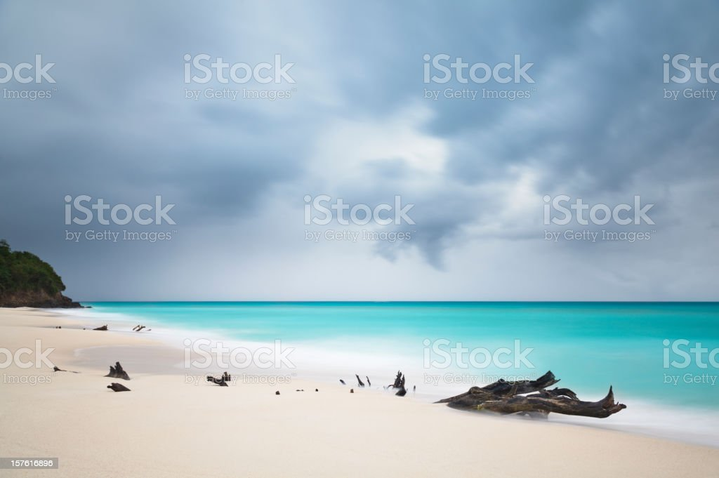Stormy Caribbean Beach With Driftwood stock photo