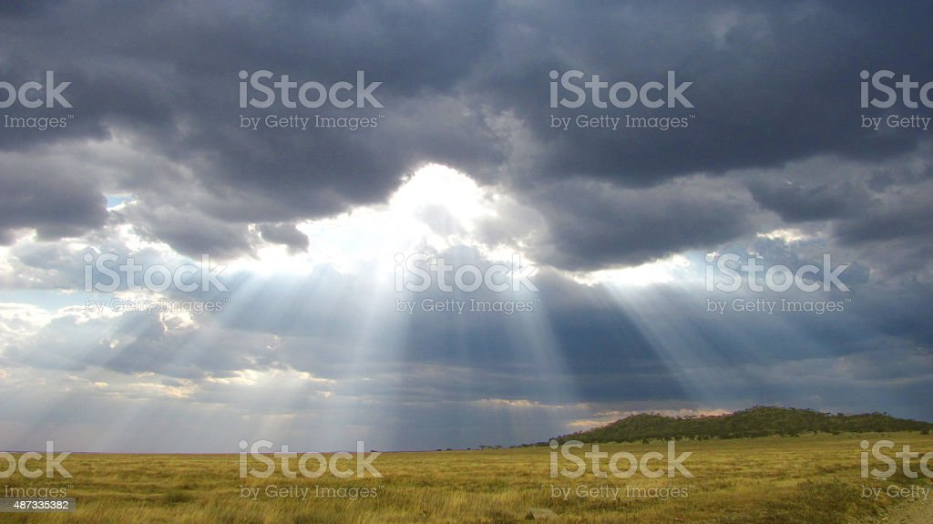 Stormy clouds covering the Serengeti stock photo